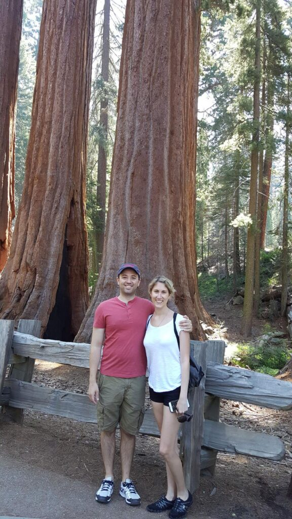 THE TREES ARE LARGER THAN YOU CAN IMAGINE IN SEQUOIA NATIONAL PARK