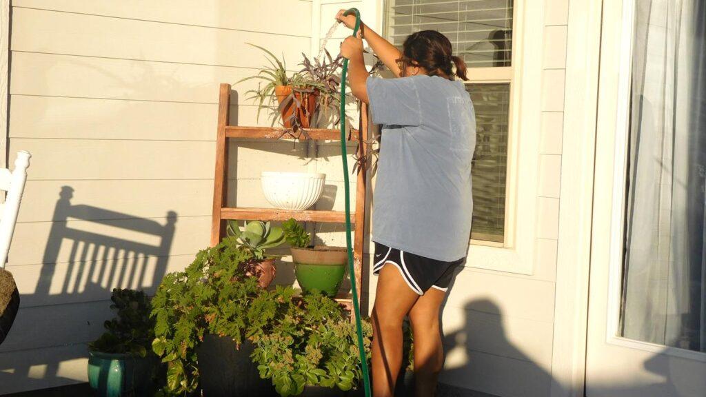 Kristy watering