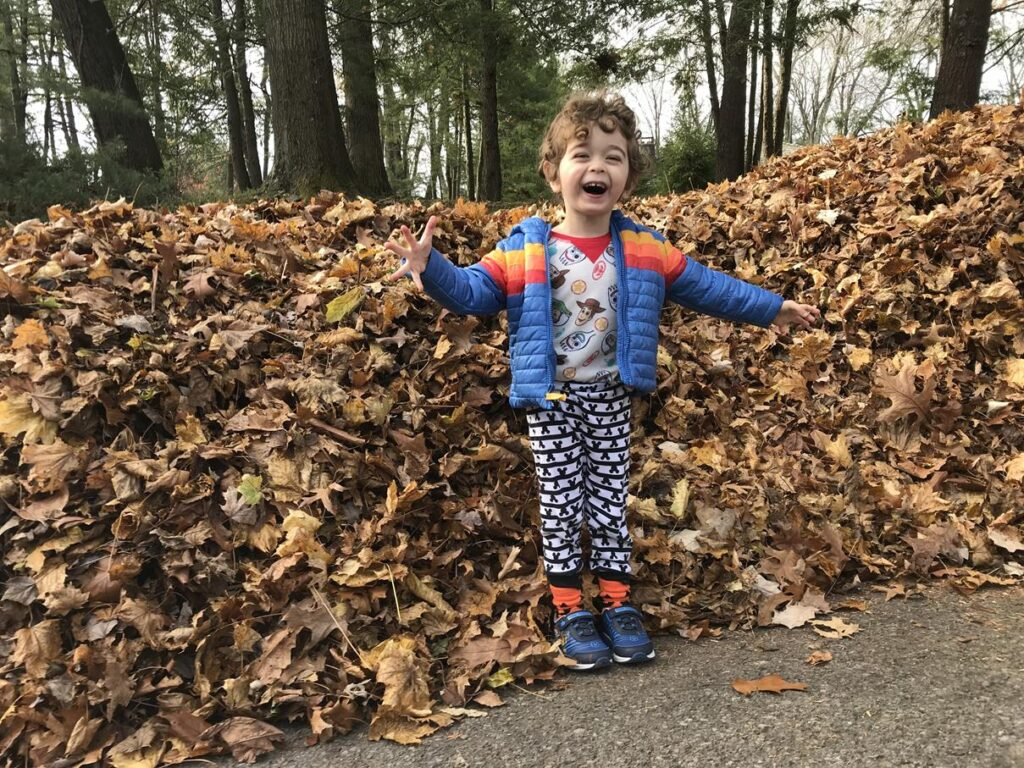 PLAYING IN GIANT LEAF PILES