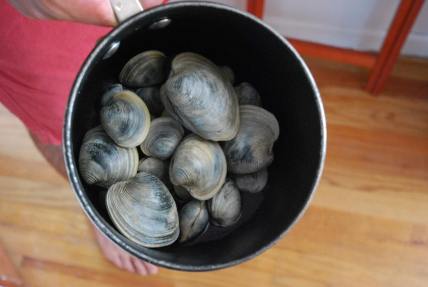 IT'S CLAM BAKE TIME!